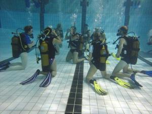 Plongee plaisir niveau plongeur sous marin pdf telecharger
