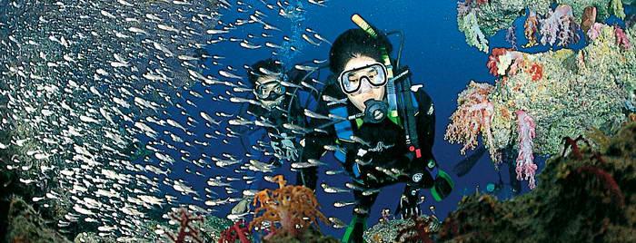 plongee-sous-marine-01